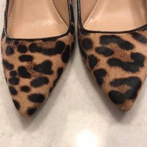 J Crew Kitten Heel Leopard Calf Hair pumps size 8